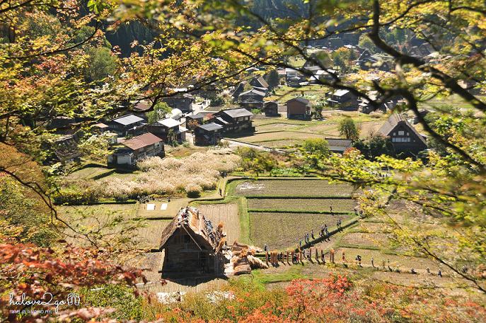 lang-dang-thu-vang-xu-phu-tang-shiragawago-7