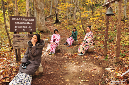 lang-dang-thu-vang-xu-phu-tang-takaragawa-in-the-wood
