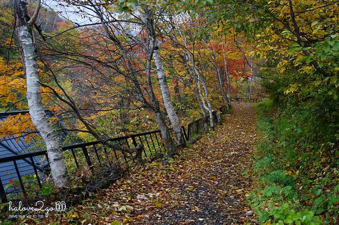 lang-dang-thu-vang-xu-phu-tang-takaragawa-trail-3