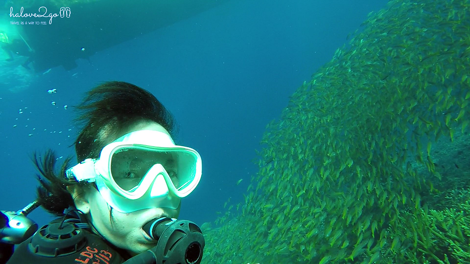thien-duong-bien-dao-malaysia-redang-diving-4