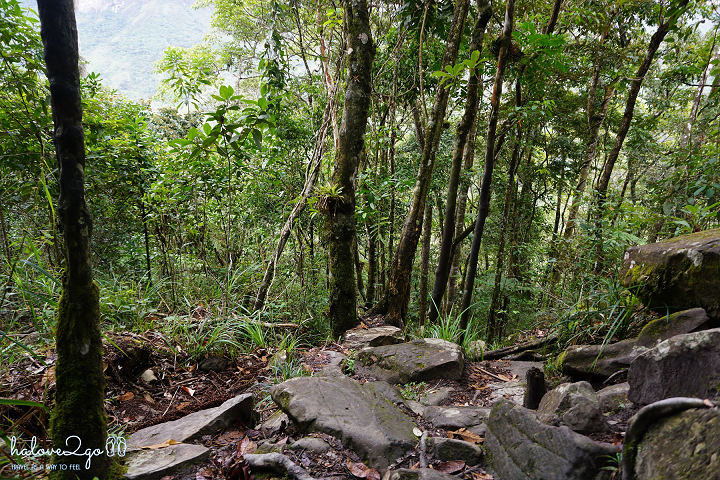dam-minh-voi-thien-nhien-o-thung-lung-pati-day-2-trail