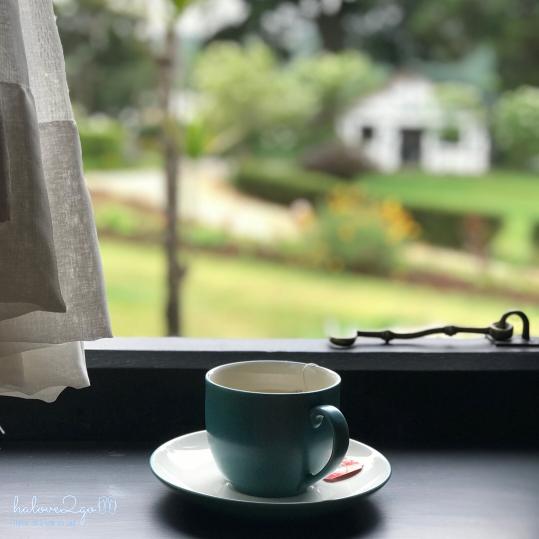 Nuwara-eliya-xanh-mat-doi-che-cup-of-tea