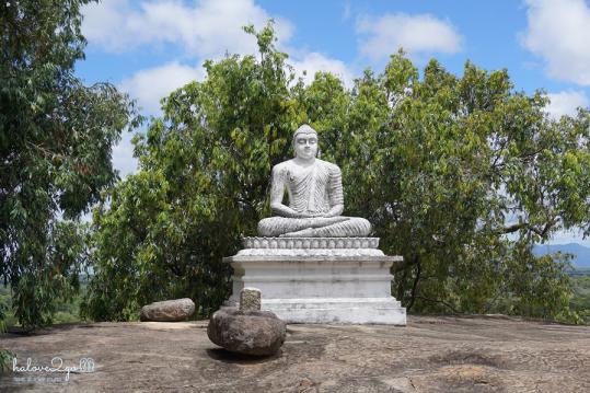 sigiriya-pidulangara-leo-nui-o-vung-tam-giac-vang-pidurangula-sitting-buddha-2
