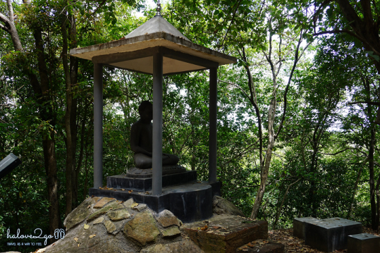 sigiriya-pidulangara-leo-nui-o-vung-tam-giac-vang-pidurangula-sitting-buddha