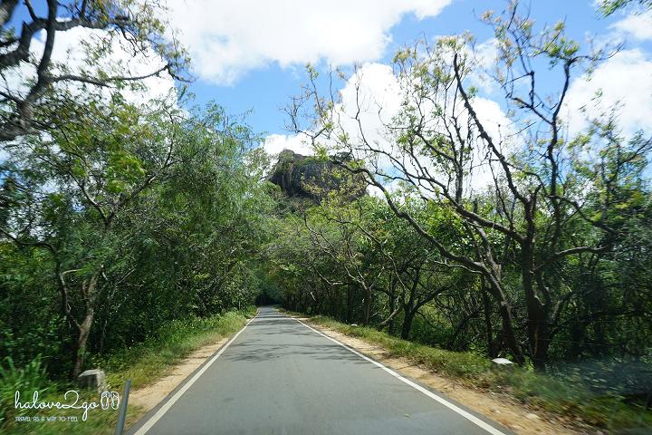 sigiriya-pidulangara-leo-nui-o-vung-tam-giac-vang-road-to-pidurangula