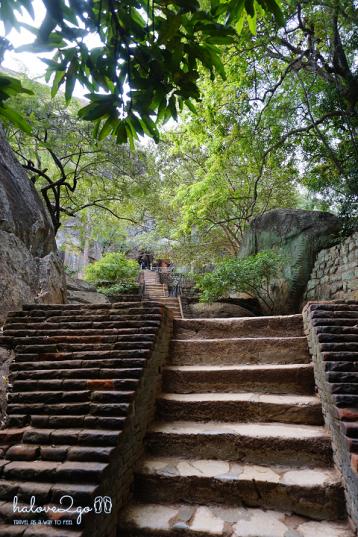 sigiriya-pidulangara-leo-nui-o-vung-tam-giac-vang-stairs-at-sigiriya-3