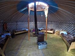 Mong-co-thu-vang-long-lay-tren-lung-ngua-yurt-3