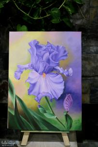 ve-tranh--mot-hanh-trinh-moi-bat-dau-hoa-iris