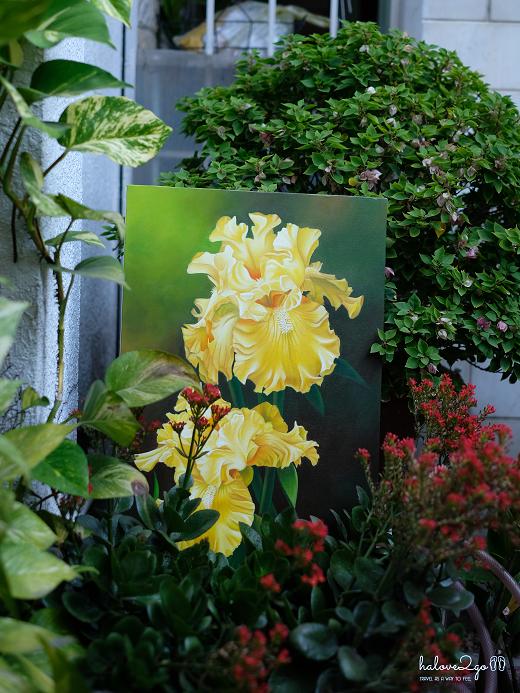 Yellow Irises- Acrylic on canvas 40x60cm