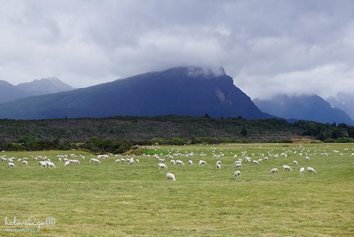On the way to Te Anau