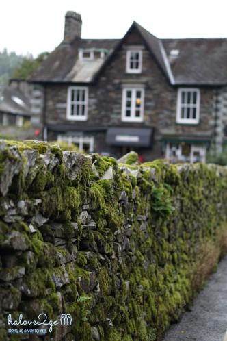 English mossy rocky fences