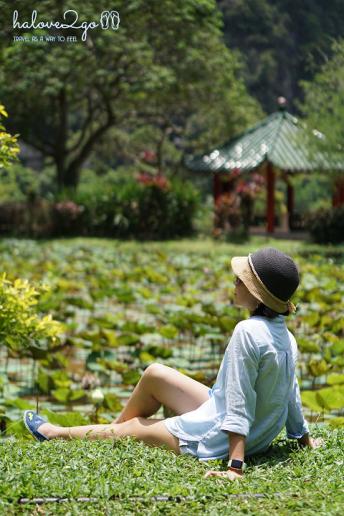 ipoh-thanh-pho-xinh-dep-it-duoc-biet-den-cua-malaysia-lotus-pond-2