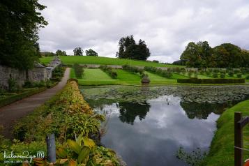 rong-ruoi-khap-scotland-huyen-thoai-blair-castle-garden-2