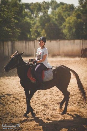 Học cưỡi ngựa
