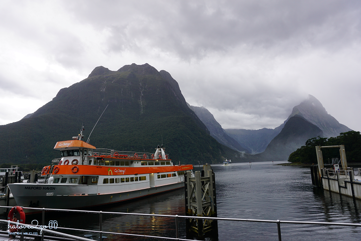 Cruise to Milford Sound