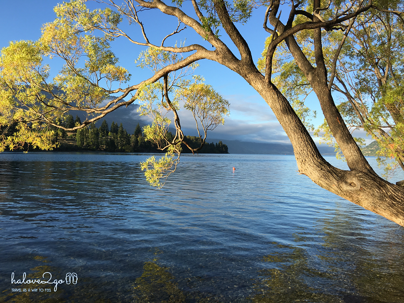 charming-queenstown-lake-wakatipu-running-2