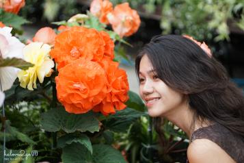 christchurch-thanh-pho-mau-xanh-botanical-garden-5