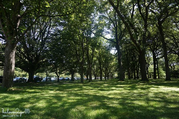 new-zealand-chuyen-road-trip-dau-tien-cua-toi-christchurch-park