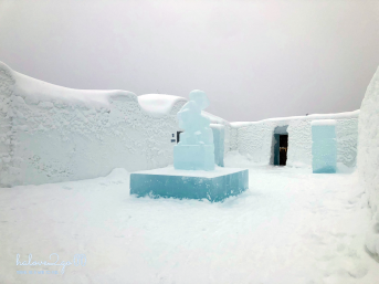 Ice hotel - backyard
