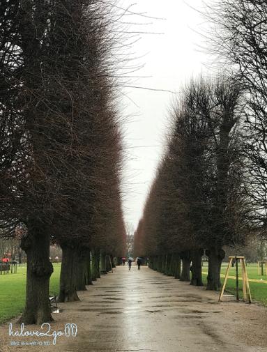 thang-tram-cam-xuc-voi-copenhagen-trees-2