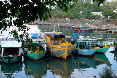 hoang-so-mot-thoang-cu-lao-cham-au-thuyen-6