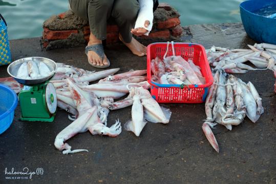 hoang-so-mot-thoang-cu-lao-cham-bai-lang-market-3