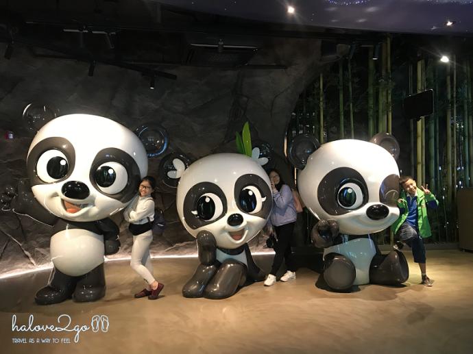 bi-kip-cho-mot-ngay-tron-ven-tai-everland-seoul-panda-world