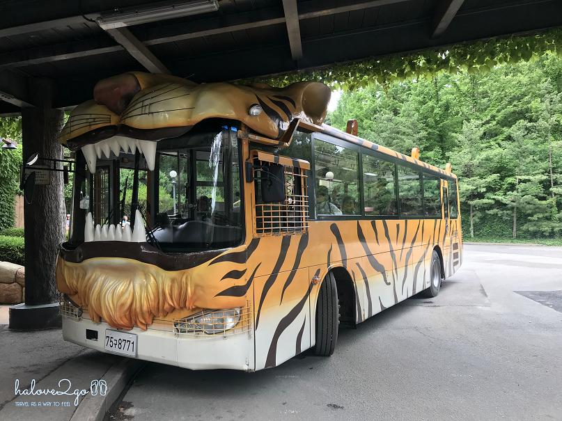 bi-kip-cho-mot-ngay-tron-ven-tai-everland-seoul-safari-world