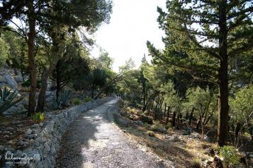 Con đường trekking lên đỉnh đồi