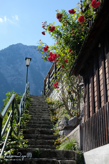 lang-co-hallstatt-mot-nua-nhu-mo-mot-nua-doi-stairs