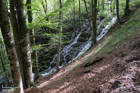 plitvice-bieng-biec-mien-lam-xanh-waterfall-5