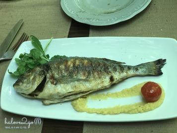 tat-tan-tat-bi-kip-di-road-trip-o-croatia-fish-2
