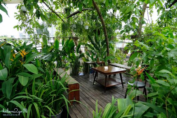 Xanh-mat-cafe-tropical-o-sai-gon
